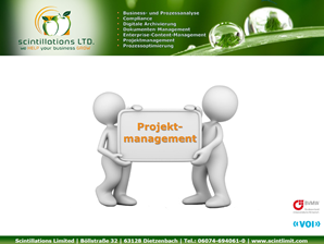 PDF Projektmanagement